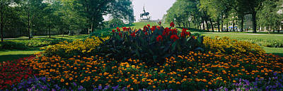 Flowers In A Park, Grant Park, Chicago Poster by Panoramic Images