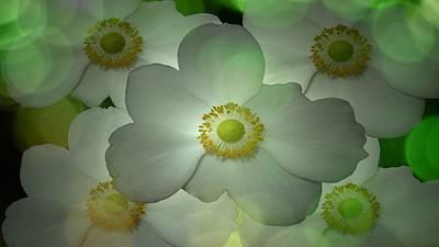 Flowers In My Garden Poster