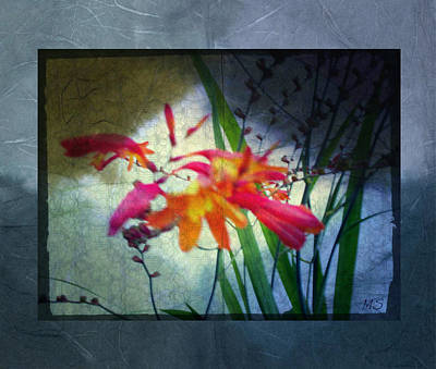 Flowers On Parchment Poster by Absinthe Art By Michelle LeAnn Scott