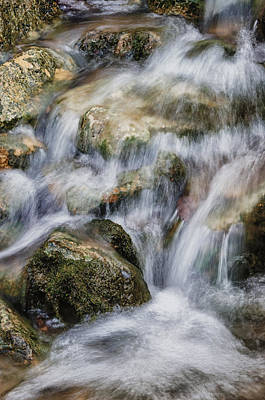 Flowing Waters Poster by Diana Boyd