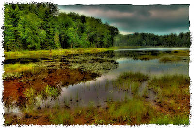 Fly Pond In The Summer Poster by David Patterson