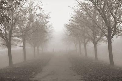 Fog Monochrome Poster