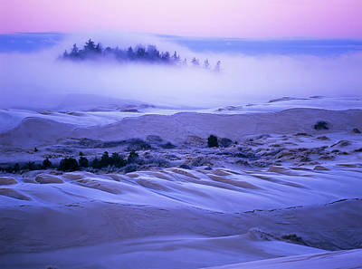 Fog Over The Sand Dunes At Dawn Poster by Robert L. Potts