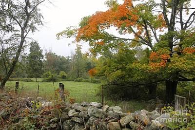 Foggy Autumn Poster by Jim Gillen