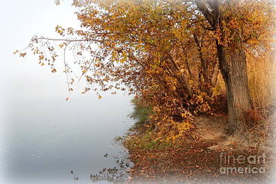 Foggy Autumn Riverbank Poster