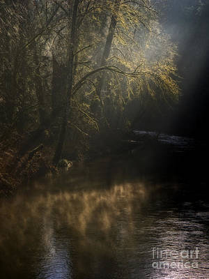Poster featuring the photograph Foggy Creek by Inge Riis McDonald
