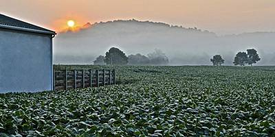 Foggy Farm Field Poster