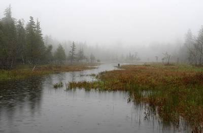 Foggy Marsh Near Jordan Pond Poster
