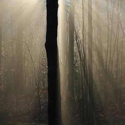 Foggy Mornin' Poster