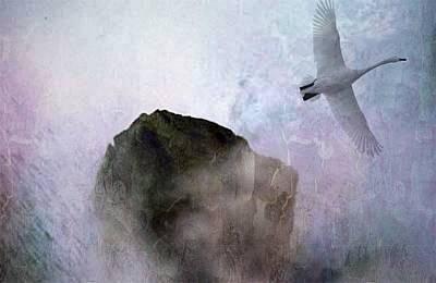 Foggy Morning Poster by Gun Legler