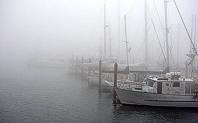 Poster featuring the photograph Foggy Morning In Charleston Harbor by AJ  Schibig