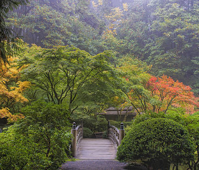 Foggy Morning In Japanese Garden Poster