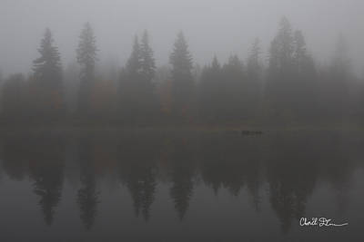 Foggy Morning On The Lake Poster