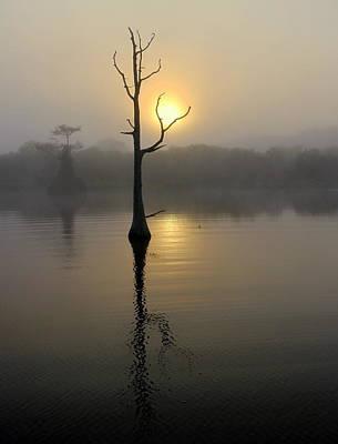 Foggy Morning Sunrise Poster