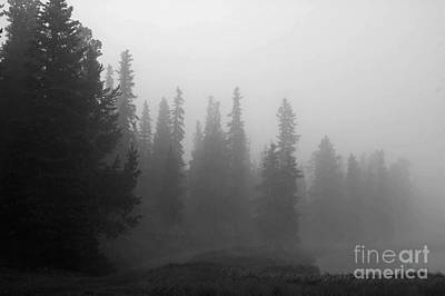Foggy Mt Evans Poster