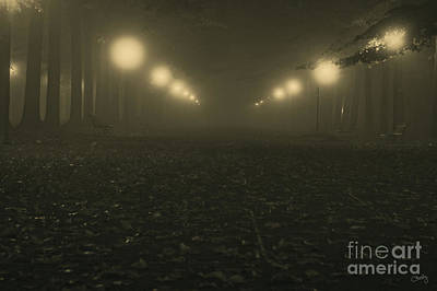 Foggy Night In A Park Poster