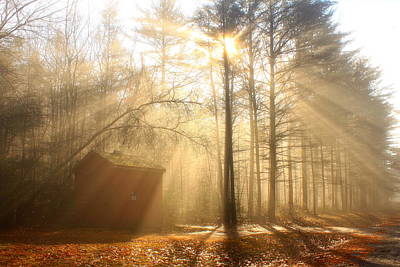 Foggy Rays And Forest Cabin Poster by John Burk