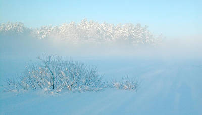 Foggy Winter Morning On Mud Lake Poster by Rob Huntley