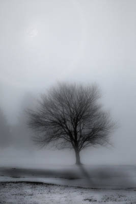 Foggy Winter Night Poster