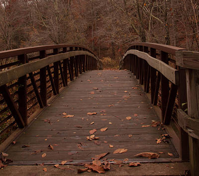 Footbridge At Conkle's Hollow Poster by Haren Images- Kriss Haren