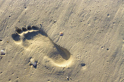 Footprints In The Sands - Playa Del Carmen Poster by Mark E Tisdale