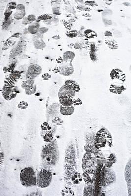 Footprints Poster by Tom Gowanlock