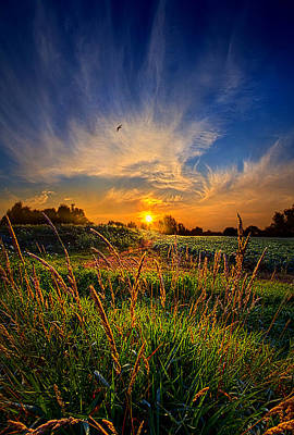For When The Day Began Poster by Phil Koch