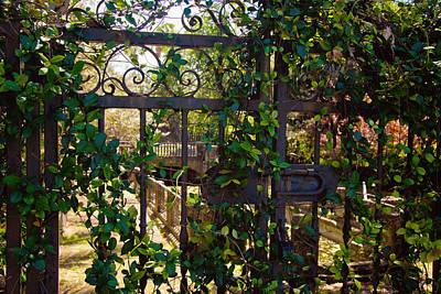 Forbidden Garden Poster