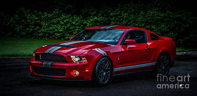 Ford Mustang Gt 500 Cobra Poster