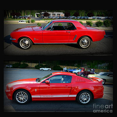 Ford Mustang Old Or New Poster by Paul Ward