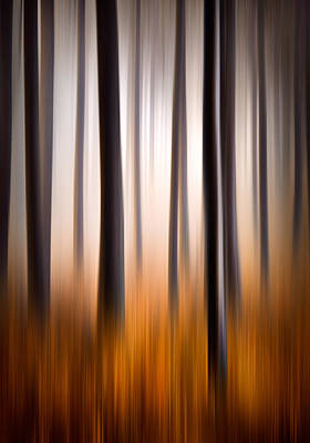Forest Essence Abstract Autumn Landscape Poster