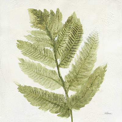 Forest Ferns I Poster