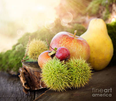 Forest Fruit Poster by Mythja  Photography