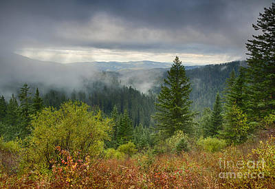 Forest Mists Poster by Idaho Scenic Images Linda Lantzy