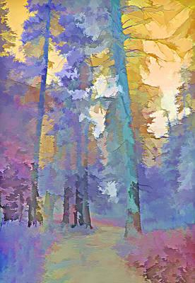 Forest Road - Color Splash 3 Poster by Steve Ohlsen
