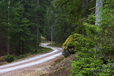 Poster featuring the photograph Forest Road by Kennerth and Birgitta Kullman