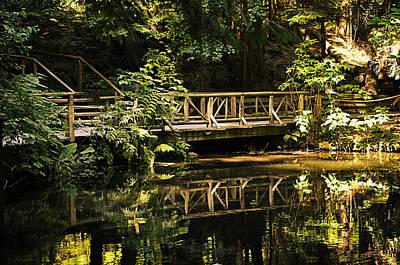 Forest Wooden Bridge Poster