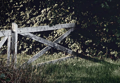Forgotten Garden Poster by Odd Jeppesen