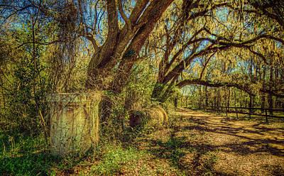 Forgotten Under The Oaks Poster by Lewis Mann