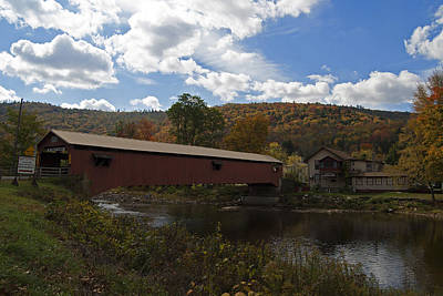 Forksville Covered Bridge Poster by Elsa Marie Santoro