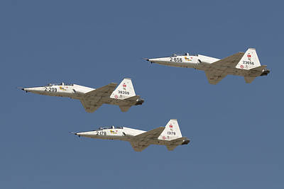 Formation Of Turkish Air Force T-38a Poster