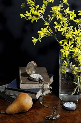 Forsythia And Pocket Watch Poster by Diana Angstadt