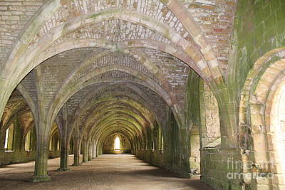 Fountains Abbey Cellarium  Poster by David Grant