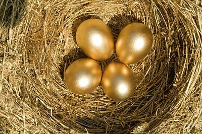 Four Golden Eggs In A Nest Poster by Ashley Cooper