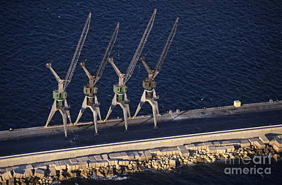 Four Harbour Cranes On Dike Poster by Sami Sarkis