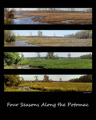 Four Seasons Along The Potomac Poster
