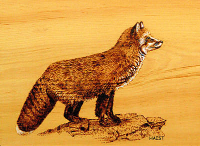 Poster featuring the pyrography FOX by Ron Haist
