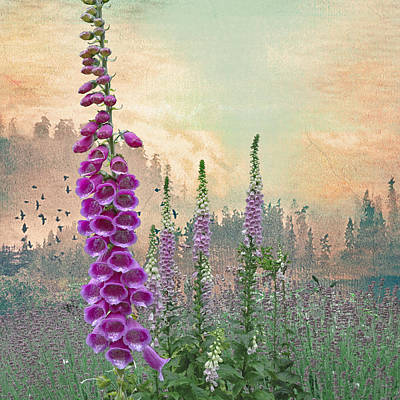 Foxglove In Washington State Poster