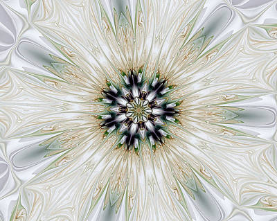 Fractal Desires Kaleidoscope Poster