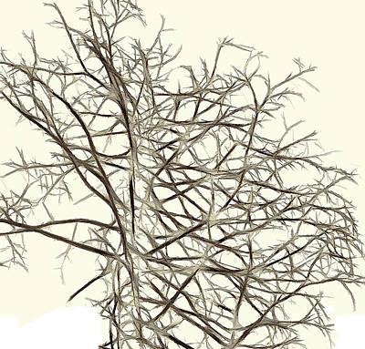 Fractal Ghost Tree - Inverted Poster by Steve Ohlsen